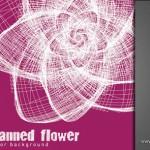دانلود وکتور Scanned Flower